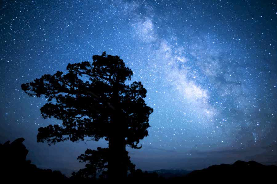 Star Gazing Grand Canyon